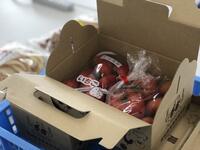 箱にイチゴとトマトを入れたところ